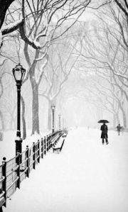 newyork3