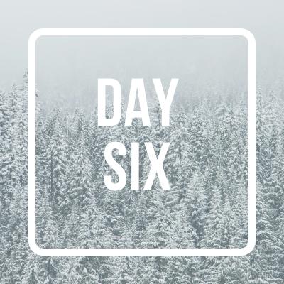 day sixpic