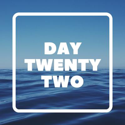 day twenty two pic